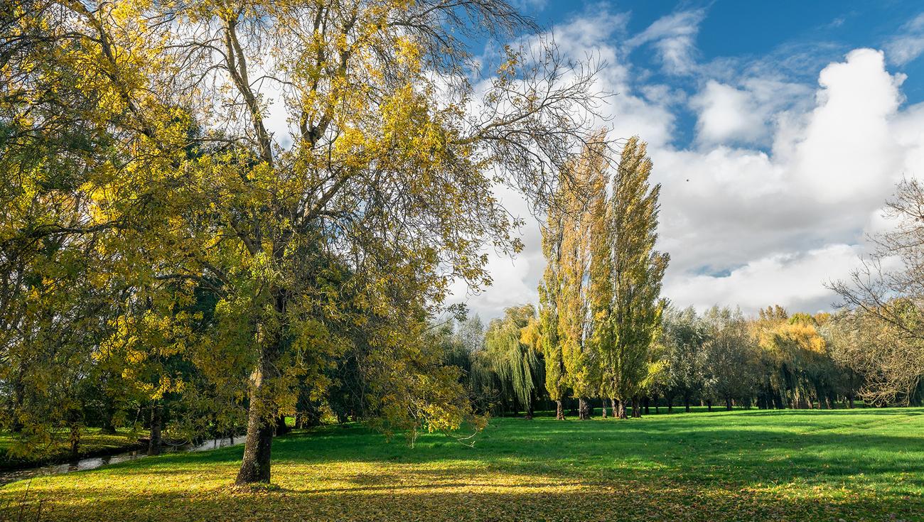 2020-Jardins-William-Christie-_DSC7350_DxO-Lionel-Hug
