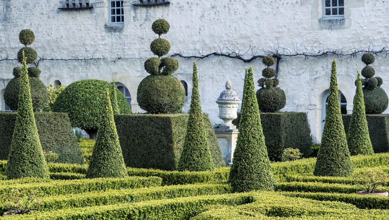 2021 Jardins William Christie Arts Florissants DSC8615 Lionel Hug