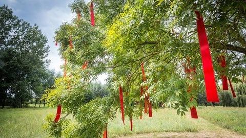 festival-jardin-ephemere-1-d-fugere