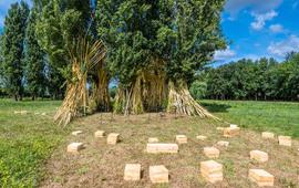 Jardin Ephemere William Christie 2017 6301 Julien Gazeau