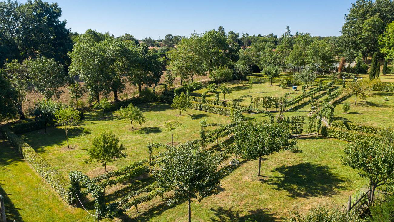 2020 Jardins William Christie Drone 0251 Julien Gazeau