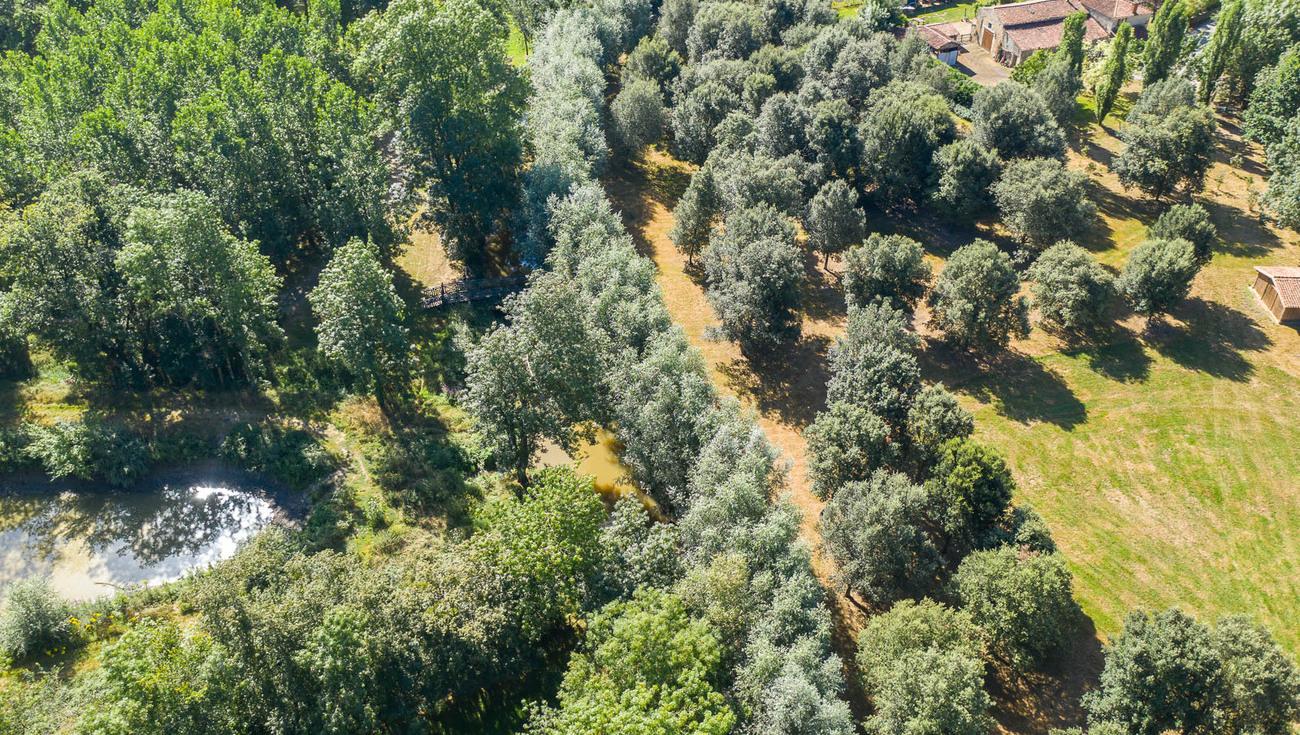 2020 Jardins William Christie Drone 0273 Julien Gazeau