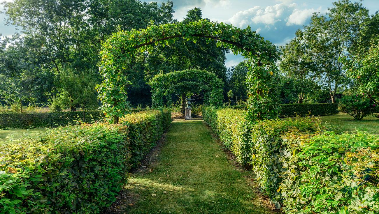 2020 Jardins William Christie DSC5028 Lionel Hug