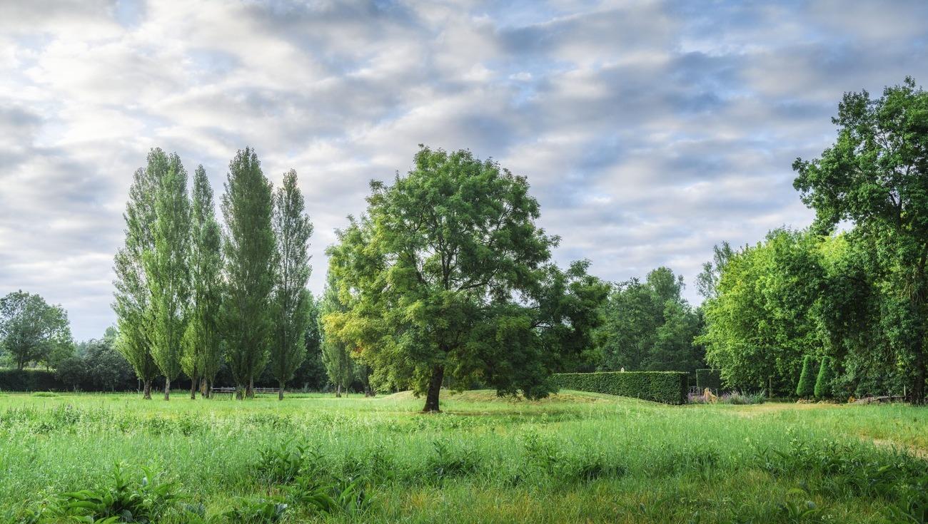 Jardins-William-Christie-2020 DSC4936 HDR-Lionel-Hug