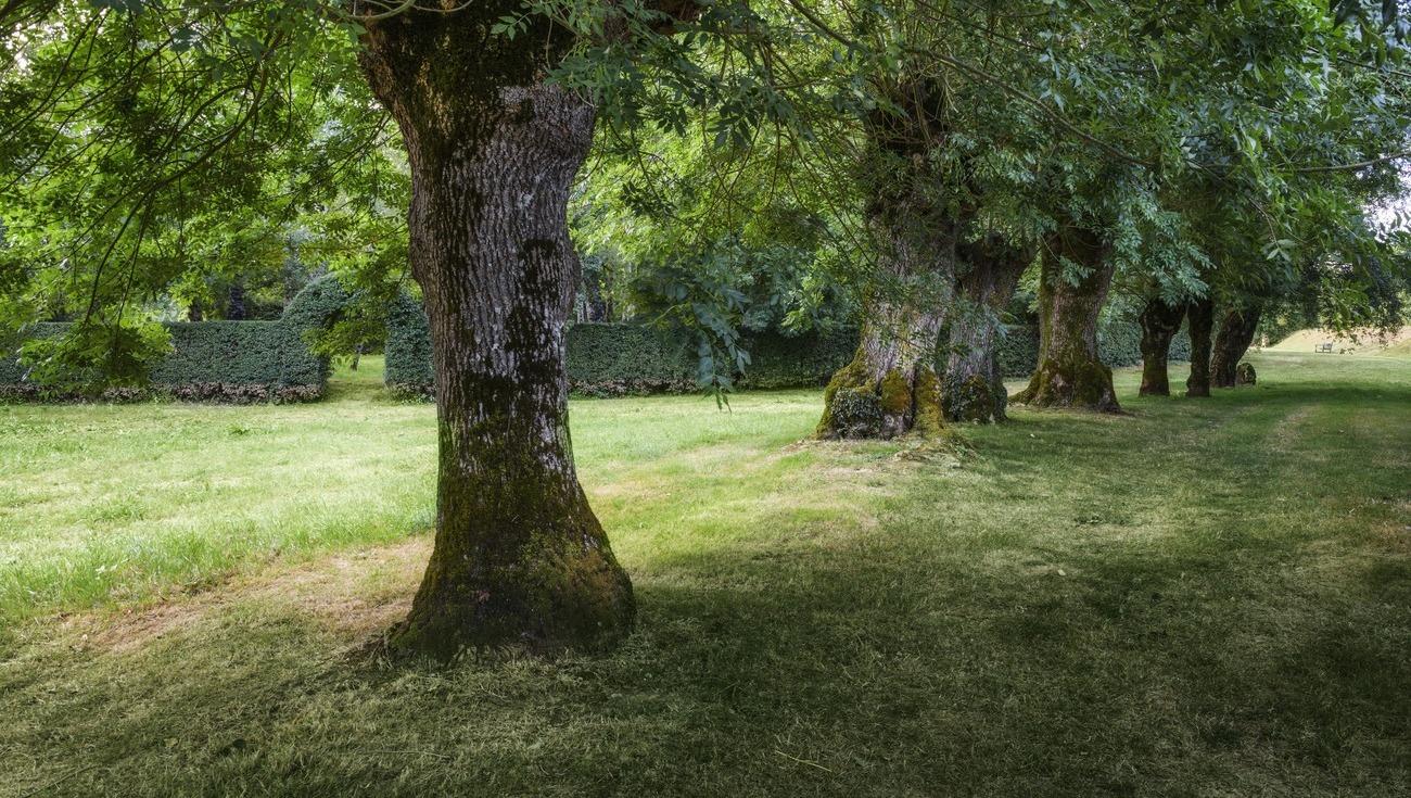 Jardins-William-Christie-2020-DSC4972 Modifier-Lionel-Hug