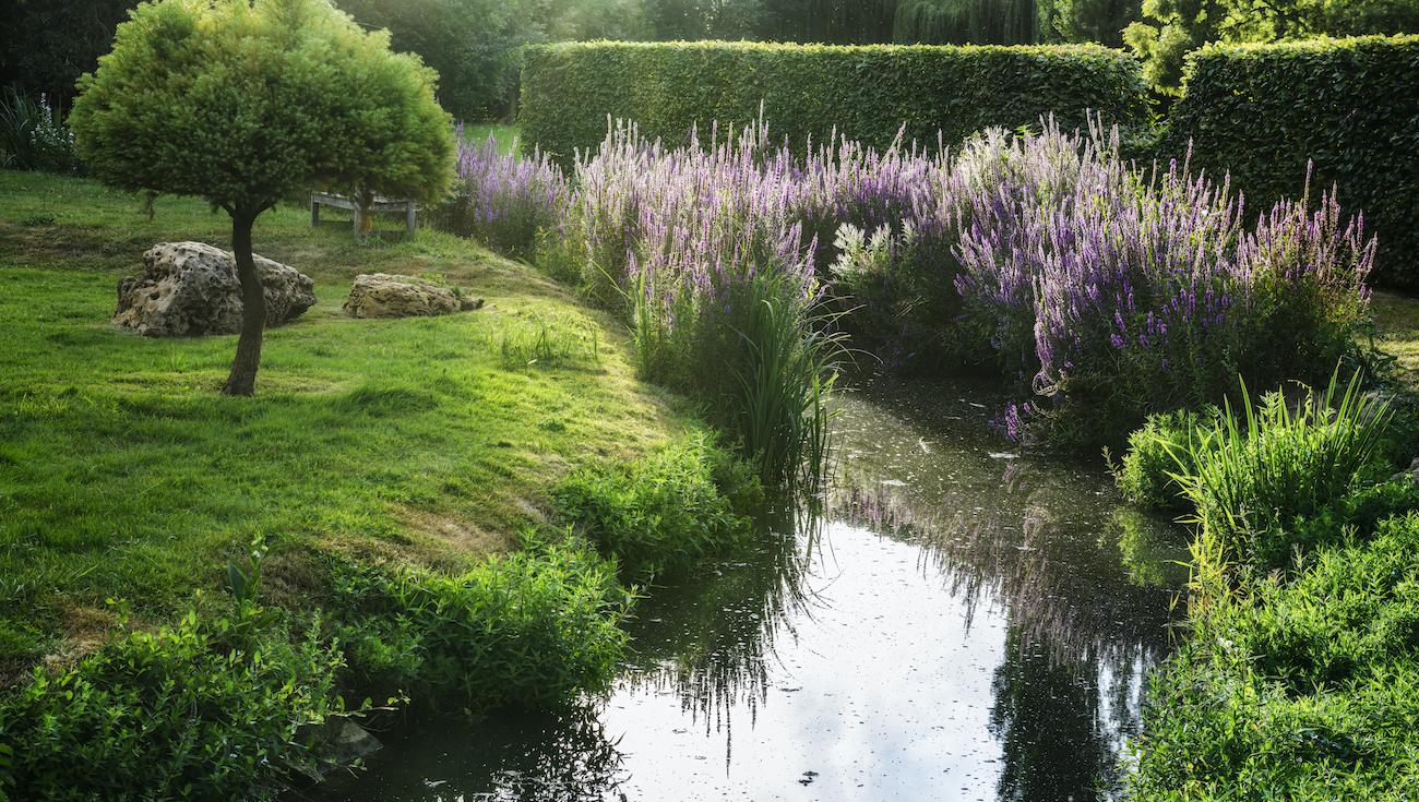 Jardins William Christie DSC4834 Lionel Hug